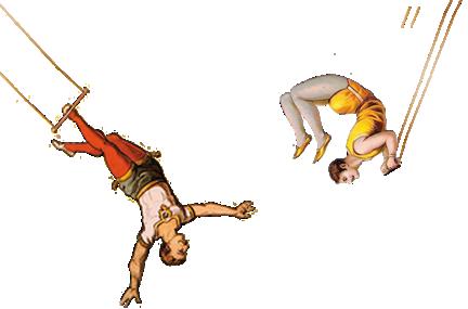 Festival du cirque
