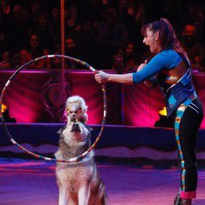 Rosi Hochegger et ses chiens au Festival du Cirque à Tours